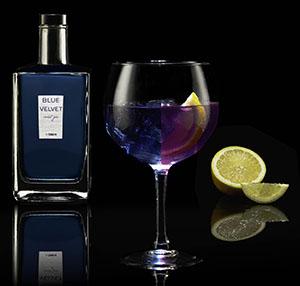 Nueva gin de Turmeon