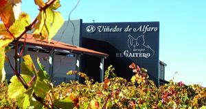 Bodega Alfaro Grupo El Gaitero