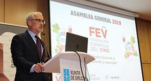 Director General de la FEV