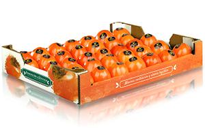 Nueva caja de Hinojosa