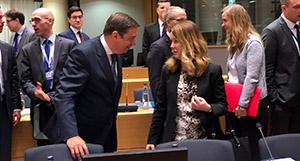 Luis Planas en el Consejo Europeo